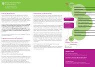 Infoblatt zum Studiengang (PDF) - ZSB