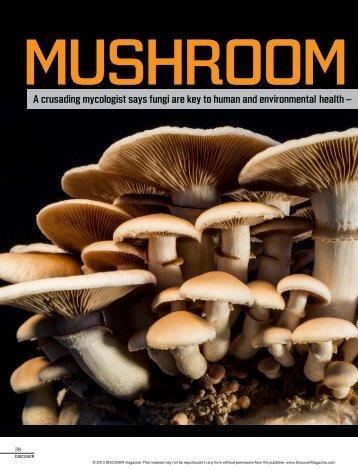 Mushroom-Manifesto