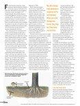 Mushroom-Manifesto - Page 3