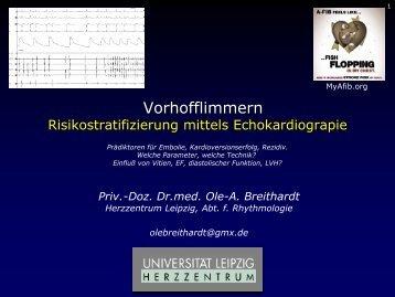 Dr. med. Breithardt - Kardioecho-Update 2013