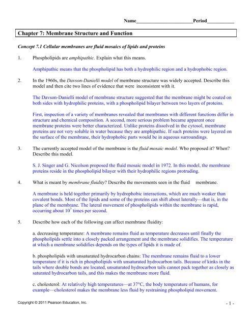 c9e_answers_active_reading_07