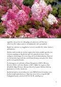 Kvalitetsregler för Plantskoleväxter - LRF - Page 7