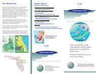 Stormwater Facts Brochure - City of Deltona, Florida