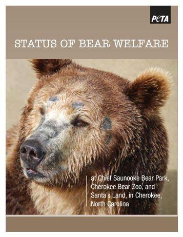 STATUS OF BEAR WELFARE