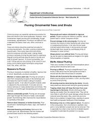 Pruning Ornamental Trees and Shrubs