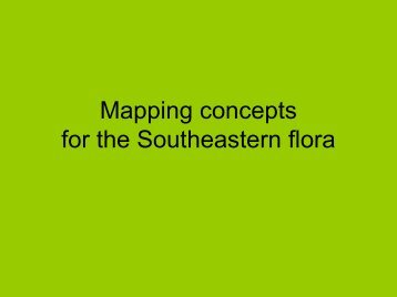 Mapping concepts for the Southeastern flora