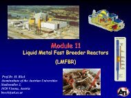 12 Liquid Metal Fast Breeder Reactors (LMFBR) - Atominstitut