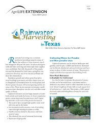 Collecting Water for Potable and Non-potable Uses - Texas Master ...