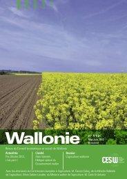 Wallonie n°112 - Conseil économique et social de la région wallonne