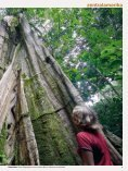 zentralamerika - FOTOGRAFIE TOBIAS HAUSER - Seite 2