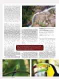 zentralamerika - FOTOGRAFIE TOBIAS HAUSER - Seite 7