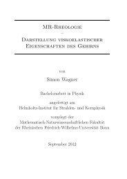 1 Theorie - Gruppe - AG Maier - Universität Bonn