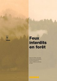 Feux interdits en forêt (Télécharger le fichier)