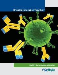 BioFX® Secondary Antibodies