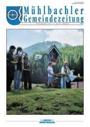 Gemeindezeitung Nr. 11 vom Juli 2002 - Mühlbachl