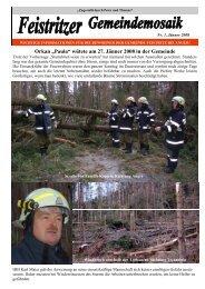Mosaik Nr. 1, Jänner 2008 - Feistritz bei Anger