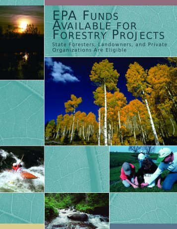 EPA Forestry Booklet w/outweb - USDA Forest Service
