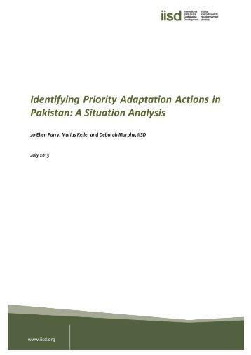 A Situation Analysis - CDKN Global