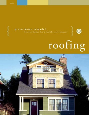 Green Home Remodel - Roofing - King County