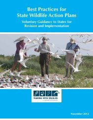 Best Practices for State Wildlife Action Plans (SWAPs)