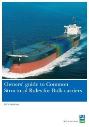 Owners' guide to Common Structural Rules for Bulk carriers - DNV