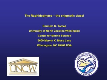 The Raphidophytes – the enigmatic class! - PICES