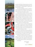 artigos - FunCEB - Page 3