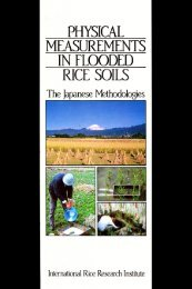 Physical measurements in flooded rice soils: the ... - IRRI books