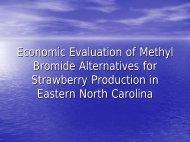 Economic Evaluation of Methyl Bromide Alternatives for Strawberry ...