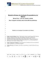 Relatório-Síntese da Avaliação Ecossistêmica do Milênio - UNEP