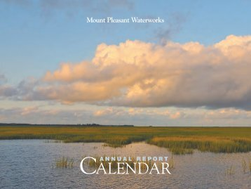 CALENDAR - Mount Pleasant Waterworks