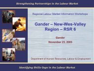 Gander – New-Wes-Valley Region – RSR 6 - LMIworks.nl.ca