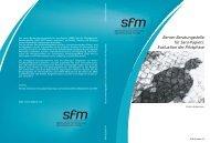 Berner Beratungsstelle für Sans-Papiers: Evaluation der Pilotphase