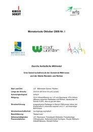 Monatsroute Oktober 2009 Nr. I - Wirtschaftsförderung Kreis Soest