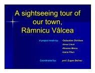 A sightseeing tour of our town, Râmnicu Vâlcea - PRIETENUL cel ...