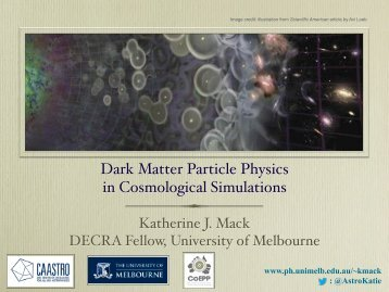 Dark Matter Particle Physics in Cosmological Simulations