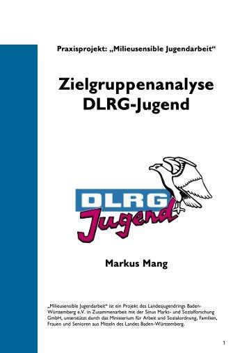 """Milieusensible Jugendarbeit"" Zielgruppenanalyse DLRG-Jugend ..."