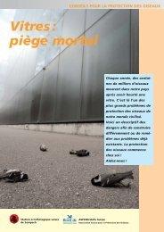 Vitres : piège mortel - Windowcollisions.info