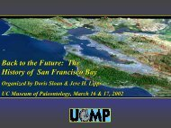 The History of San Francisco Bay - University of California Museum ...