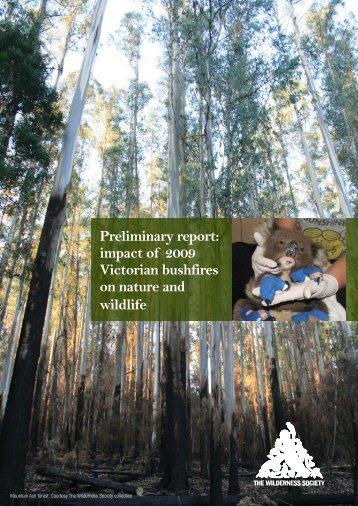 social impacts of bushfires