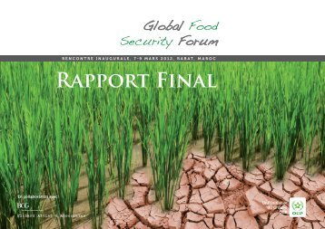 RAPPORT FINAL - Global Food Security Forum