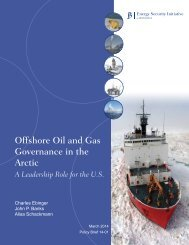 Offshore Oil and Gas Governance web