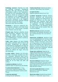 Augenkrankheiten Teil 4 - Fit mit System! - Seite 4