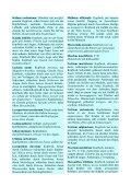 Augenkrankheiten Teil 4 - Fit mit System! - Seite 6