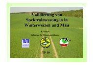 Validierung von Spektralmessungen in Weizen und Mais