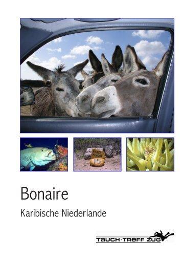 Bonaire - Tauch-Treff