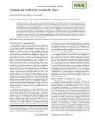 Autophagy and Cell Death in Caenorhabditis elegans