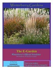 Download This Newsletter - Winterberry Garden Blog