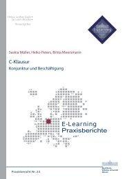 Praxisbericht 23 - ERCIS