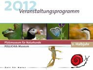 Info - Pfalzmuseum für Naturkunde